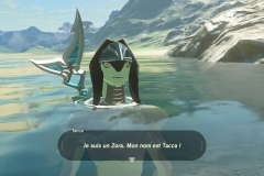 Breath of the Wild199