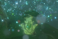 Breath of the Wild227