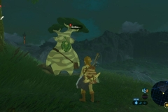 Breath of the Wild228