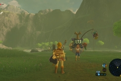 Breath of the Wild229