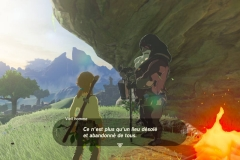 Breath of the Wild248