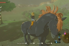 Breath of the Wild25