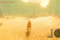 Breath of the Wild26