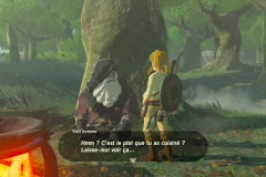 Breath of the Wild236