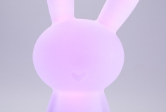 Luminous-lapin-on-3